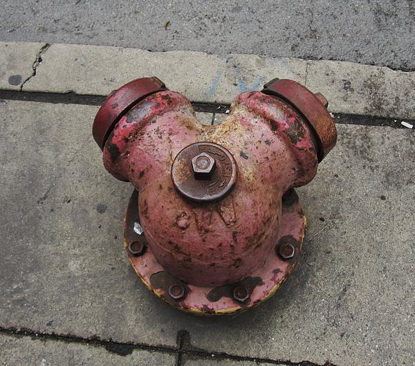 Chicago Hydrant Print by Todd Sherlock