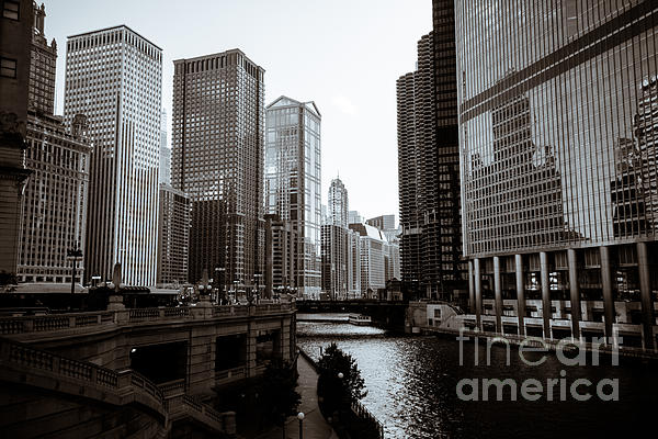Chicago River Downtown Buildings In Black And White Print by Paul Velgos
