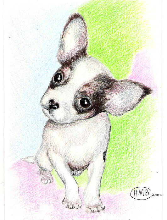 Heather Conversi - Chihuahua Pup