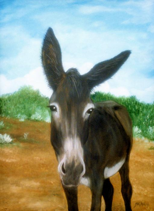 511 x 700 · 42 kB · jpeg, Mule Paintings source: http ...