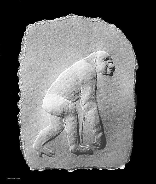 Chimp Print by Suhas Tavkar