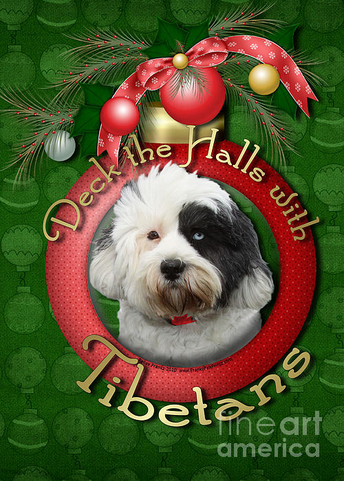 Christmas - Deck The Halls With Tibetans Print by Renae Laughner