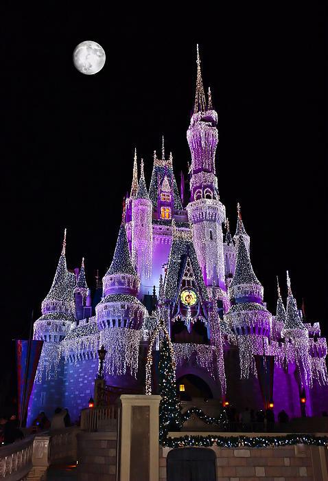 Cinderellas Castle At Night Print by Carmen Del Valle