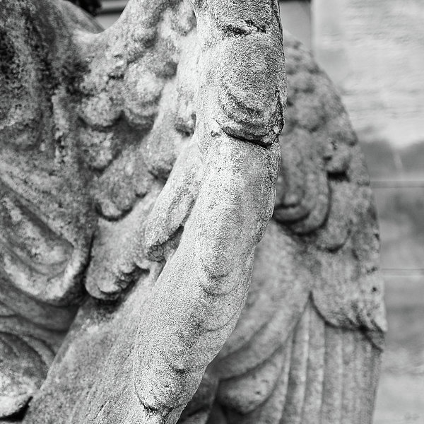 Close Up Of Wing Of Statue, Germany Print by This Is About My Way To See Light & Form In 2 Dimensions