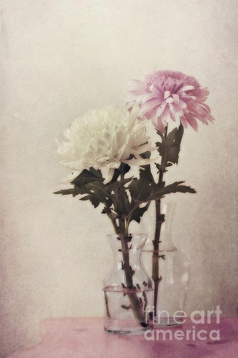 Closely Print by Priska Wettstein