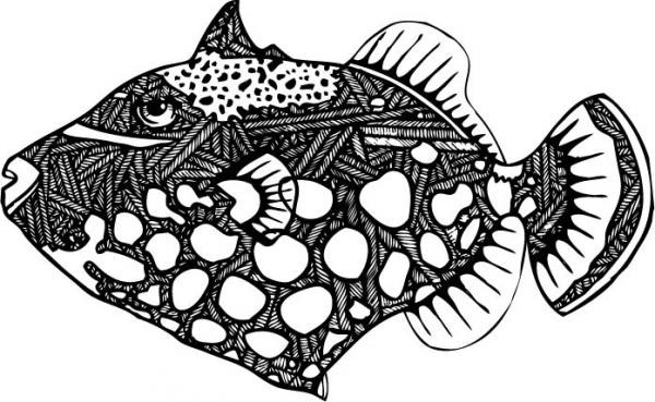 trigger fish coloring pages - photo#15