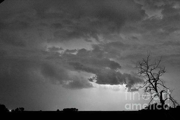 Co Cloud To Cloud Lightning Thunderstorm 27 Bw Print by James BO  Insogna