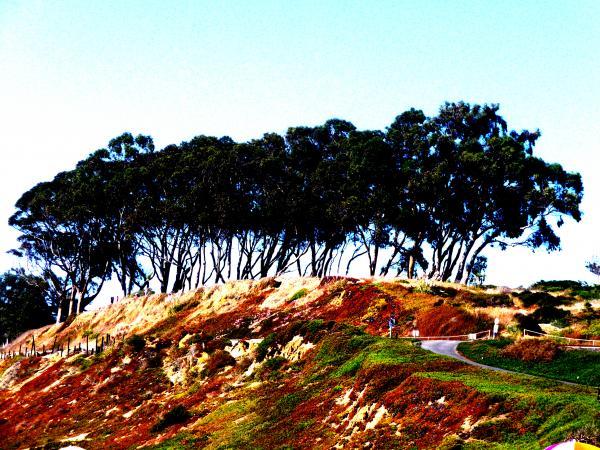 Coastal Cliff Print by Tim Tanis