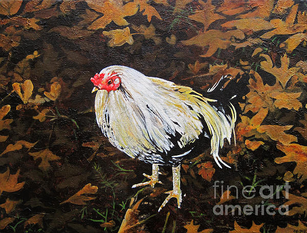 Cockerel Print by Carrie Jackson