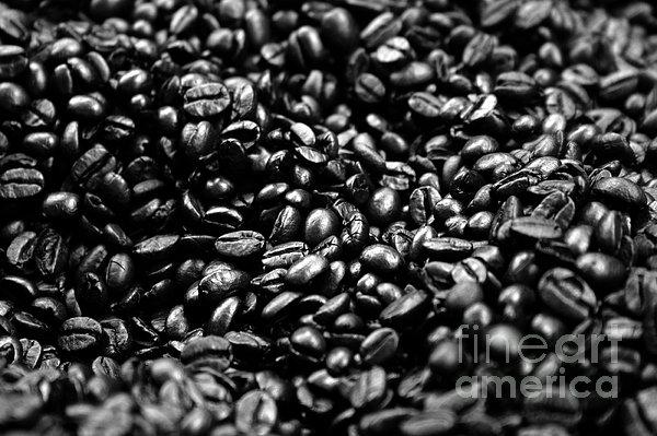 Coffee Beans Bw Print by Balanced Art