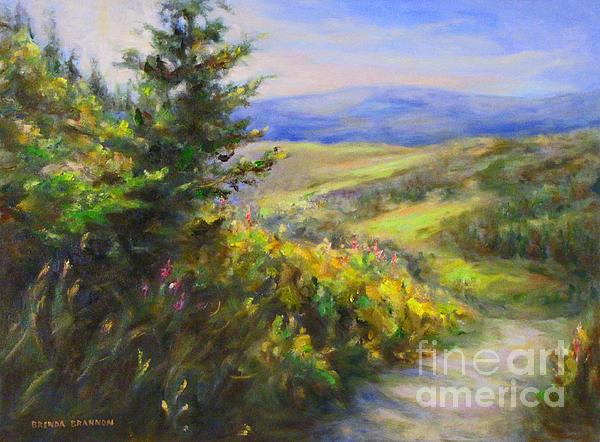 Brenda Brannon - Colorado Sunshine