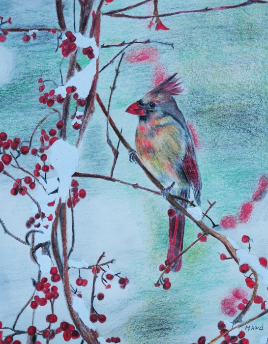 Michelle Hand - Colorful Cardinal