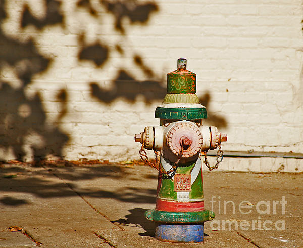 Kathy Flugrath Hicks - Colorful Fire Hydrant