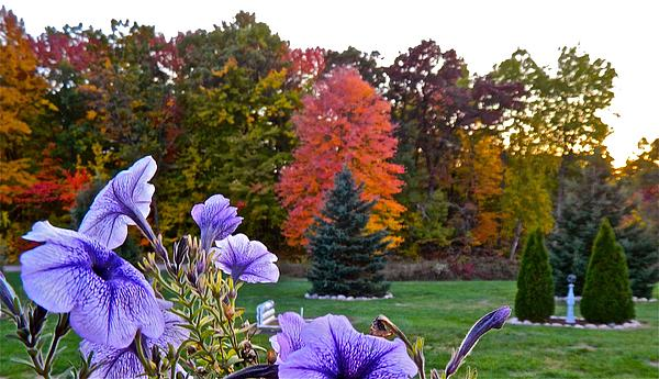 Randy Rosenberger - Colors of Autumn