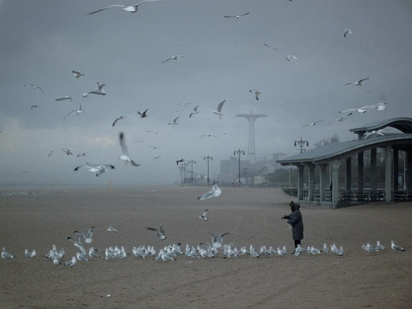 Sarah Yuster - Coney Island Kindness