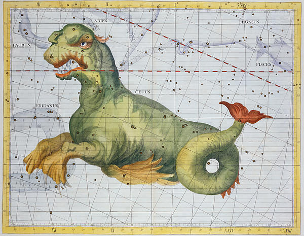 Constellation Of Cetus The Whale Print by James Thornhill