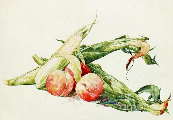 Corn And Peaches Print by Pg Reproductions