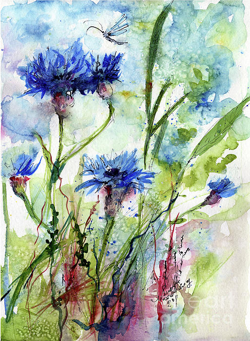 Cornflowers Korn Blumen Watercolor Painting Print by Ginette Callaway