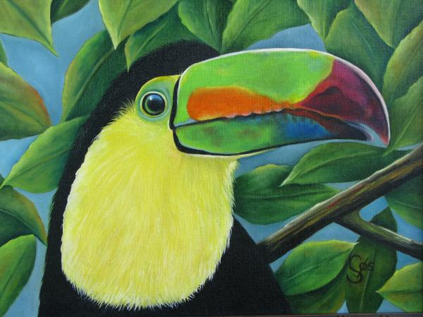 Costa Rican Toucan Painting  - Costa Rican Toucan Fine Art Print