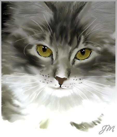 Jack Jk Morland - Cosy kitten