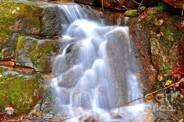 Cheri Fullen - Cotton Water