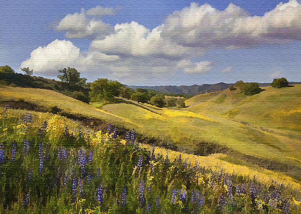 Cottonwood Canyon Print by Sharon Foster