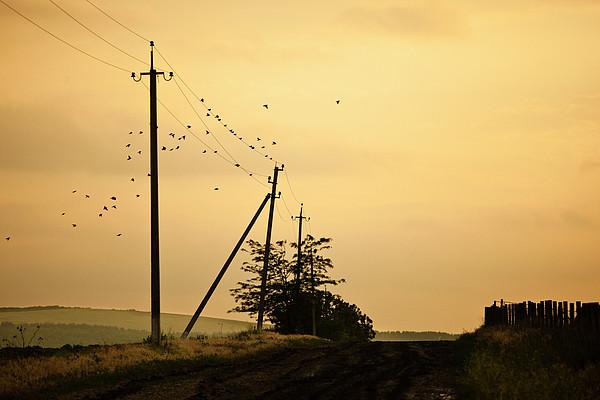 Countryside Road With Birds On Sky Print by Made By  Vitaliebrega.com