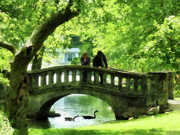 Couple On Bridge In Park Print by Susan Savad