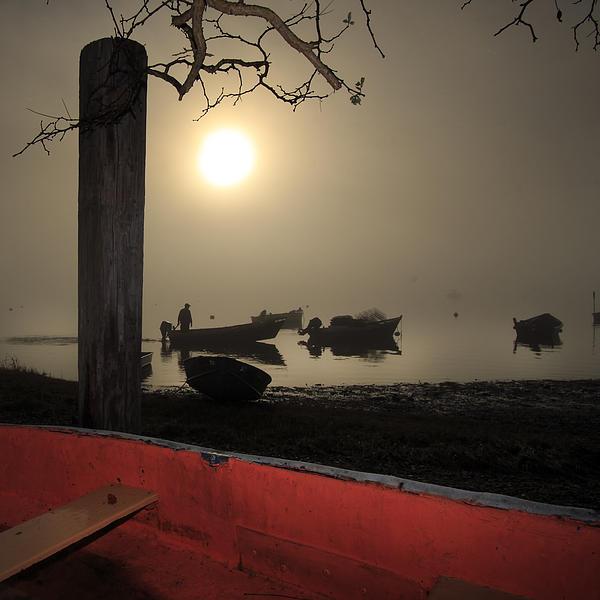 Cove Fog - Orleans Cape Cod Print by Dapixara Art