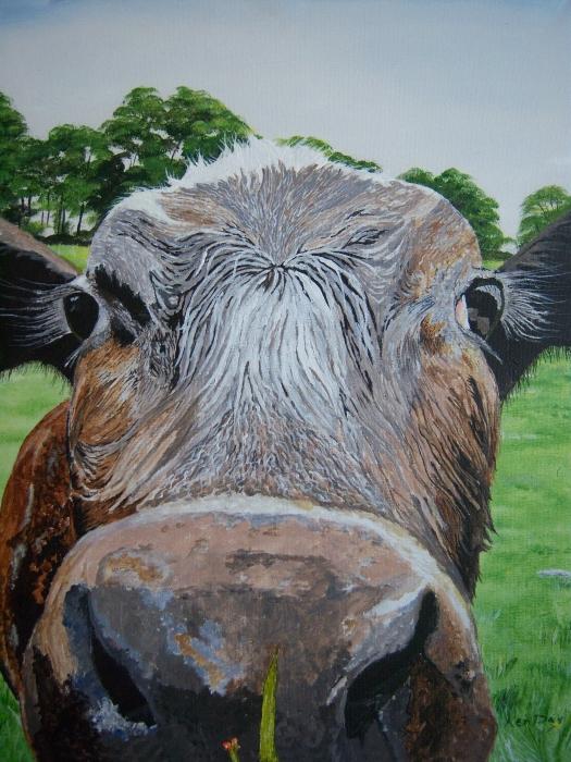 Ken Day - Cow 1