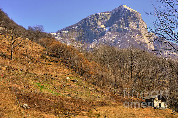Cowhouse And Snow-capped Mountain Print by Mats Silvan
