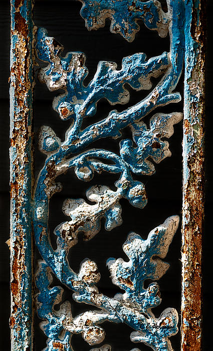 Crackled Coats Print by Christopher Holmes