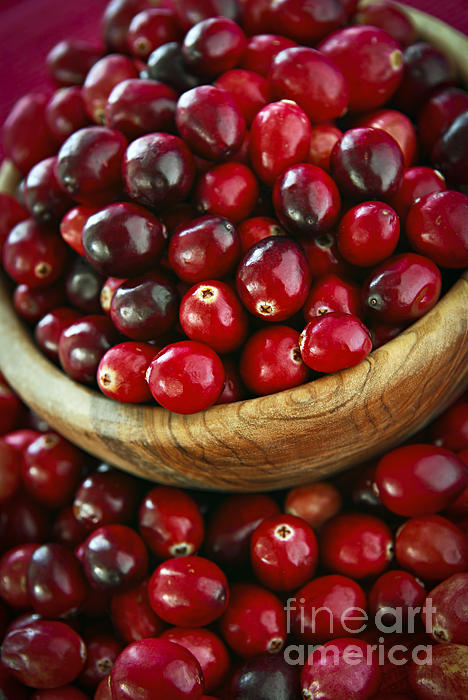 Cranberries In A Bowl Print by Elena Elisseeva