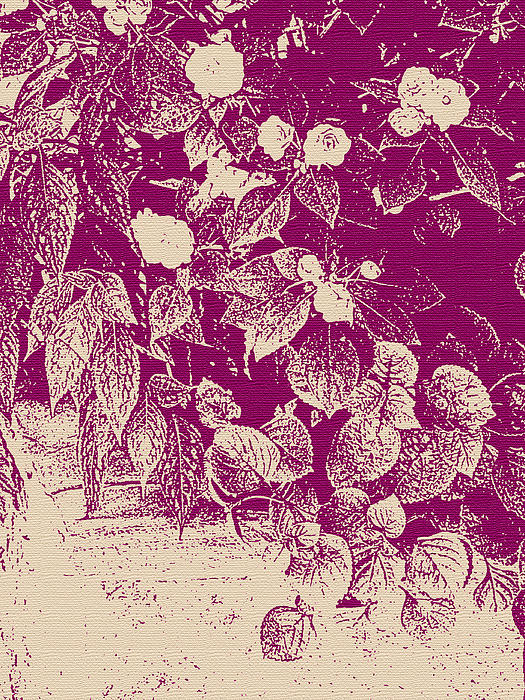 Cranberry Cascade Print by Katharine Birkett