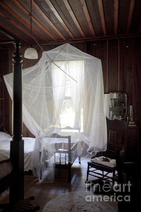 Lynn Palmer - Crib with Mosquito Netting in a Florida Cracker Farmhouse