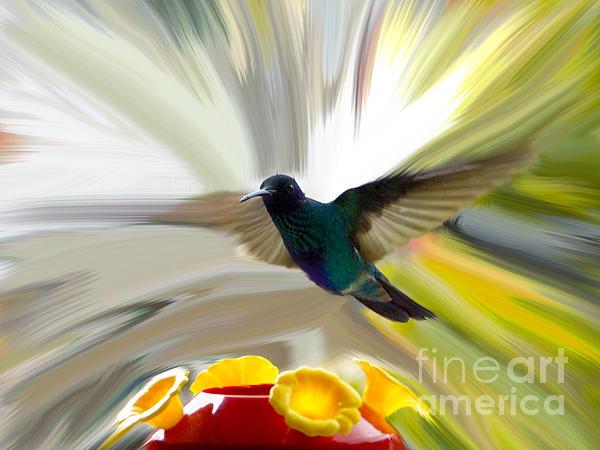 Cuenca Hummingbird Series 1 Print by Al Bourassa