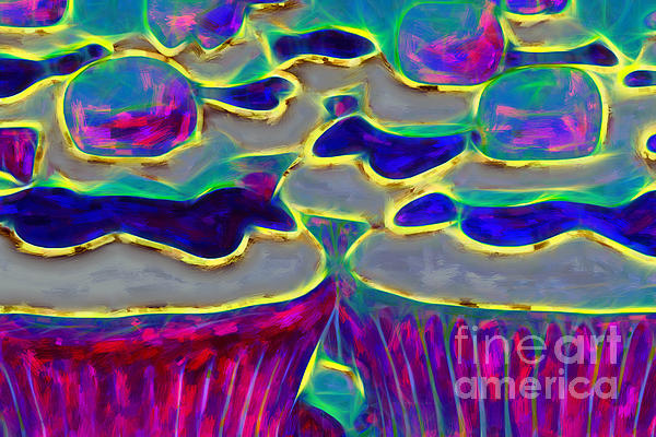 Cupcakes V2 - Painterly Print by Wingsdomain Art and Photography