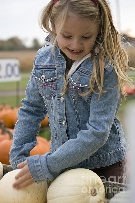 Cute Little Girl Picking A Pumpkin Print by Christopher Purcell
