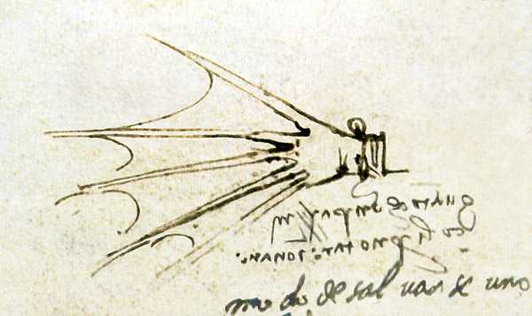 Da Vinci's Webbed Glove For Swimming Print by Sheila Terry