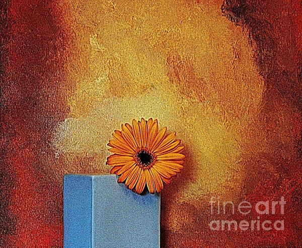 Daisy Burn Print by Marsha Heiken