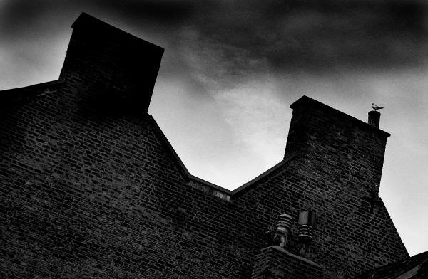 Dark Day In The Fens Print by Jez C Self