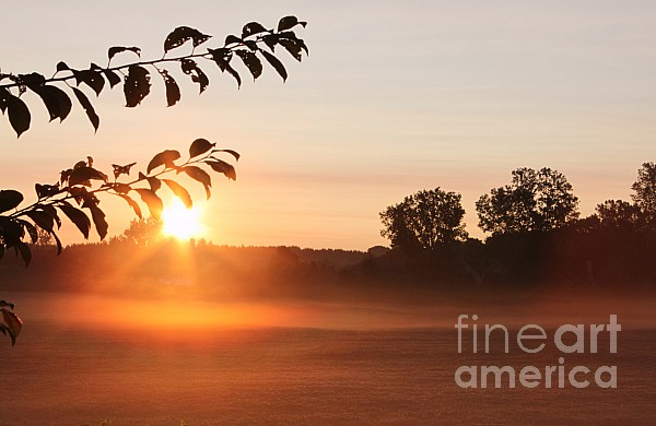 Dawn Of A Brand New Day  Print by Cathy  Beharriell