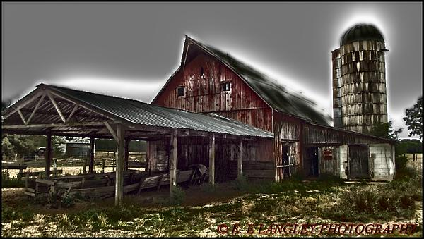 Eric Langley - Day at the barn