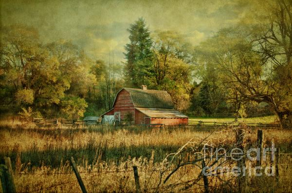 Reflective Moments  Photography and Digital Art Images - Days Gone By
