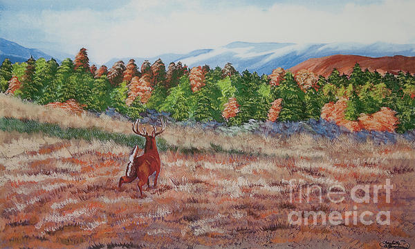 Deer In Fall Print by Charlotte Blanchard