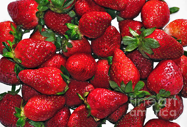 Deliciously Sweet Strawberries Print by Kaye Menner