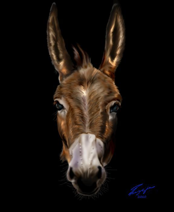 Dem-donkey Print by Reggie Duffie