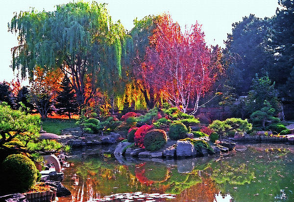 Denver Botanical Gardens 3 Photograph  - Denver Botanical Gardens 3 Fine Art Print