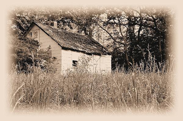 John B - Derelict Dwelling 6