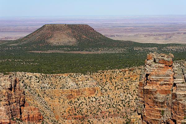 Desert Watch Tower View Print by Julie Niemela